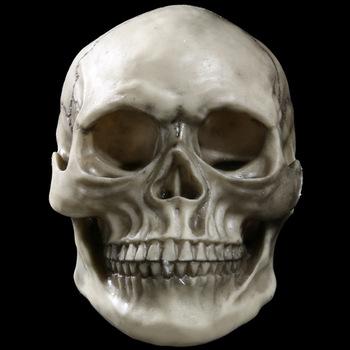 riebalų deginimo kaukolė